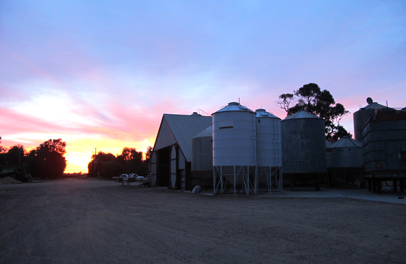 Ferme agricole à Darlington Point