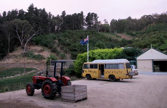 Fruit picking cerises van australie