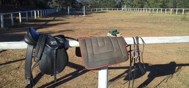 Travailler chevaux Australie 2