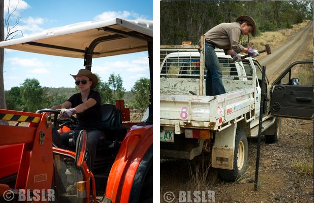 Job dans un ranch Australie