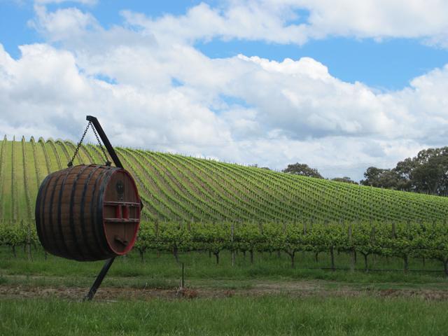 Vins australie du sud