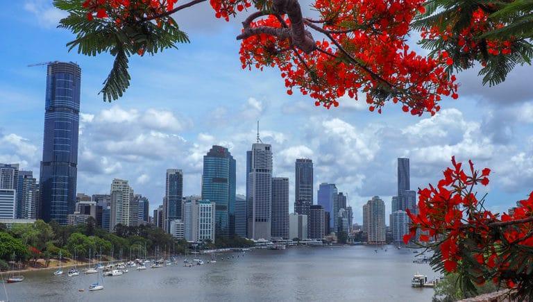 Vivre et travailler dans une auberge de jeunesse à Brisbane