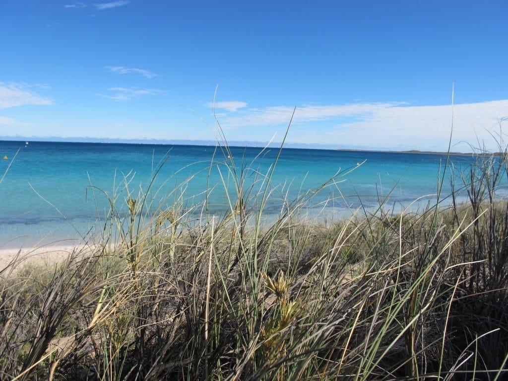 Coral Coast 6