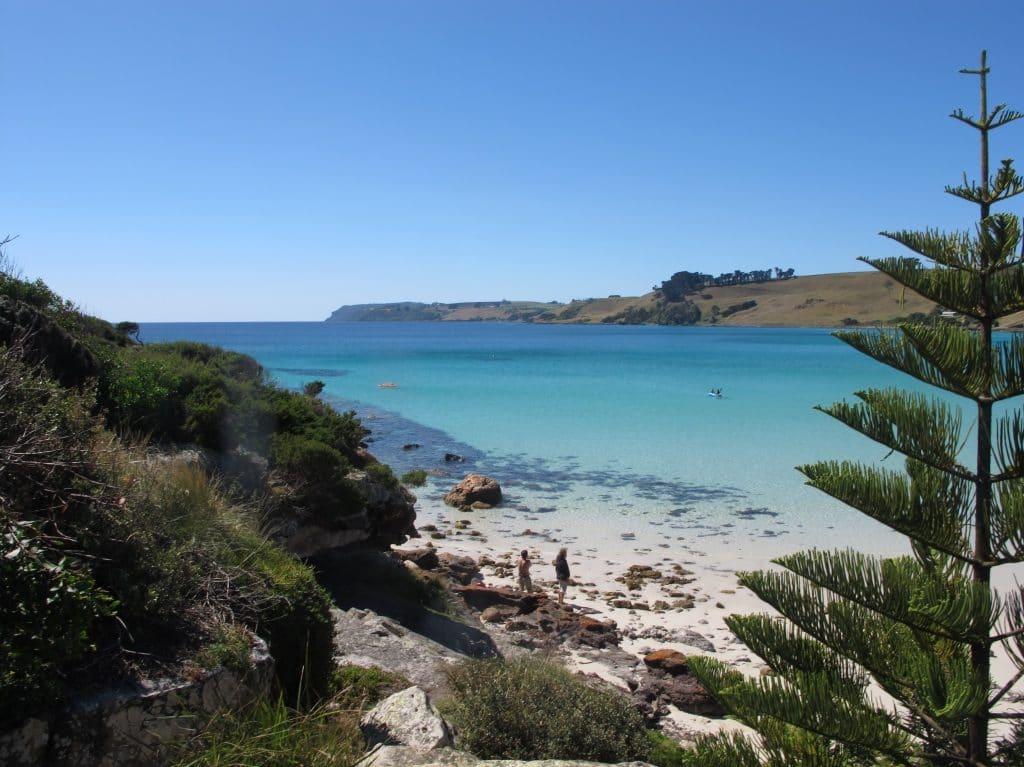 Tasmanie 7