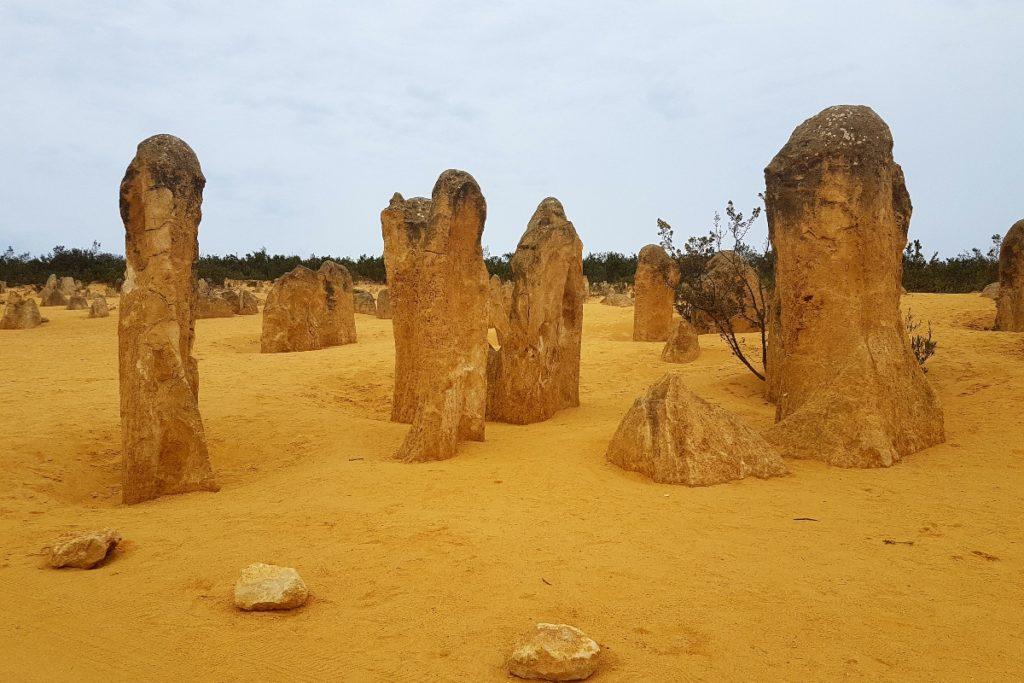 Pinnacles - Côte Ouest Australie
