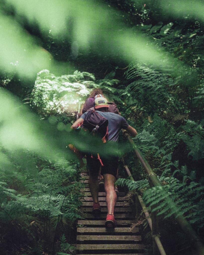 Giant Stairway Walk - Blue Mountains