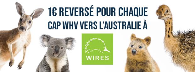 CAP Working Holiday Chapka Assurances - Association Wires - Soutien faune et flore Australie