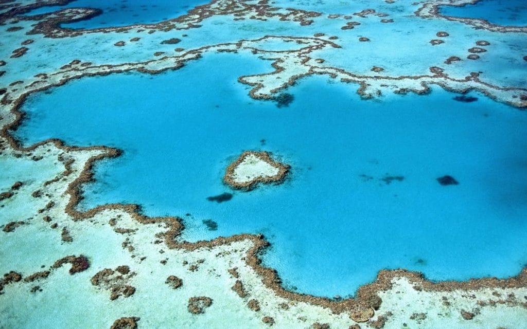 Heart Reef - Grande Barrière de Corail - Australie