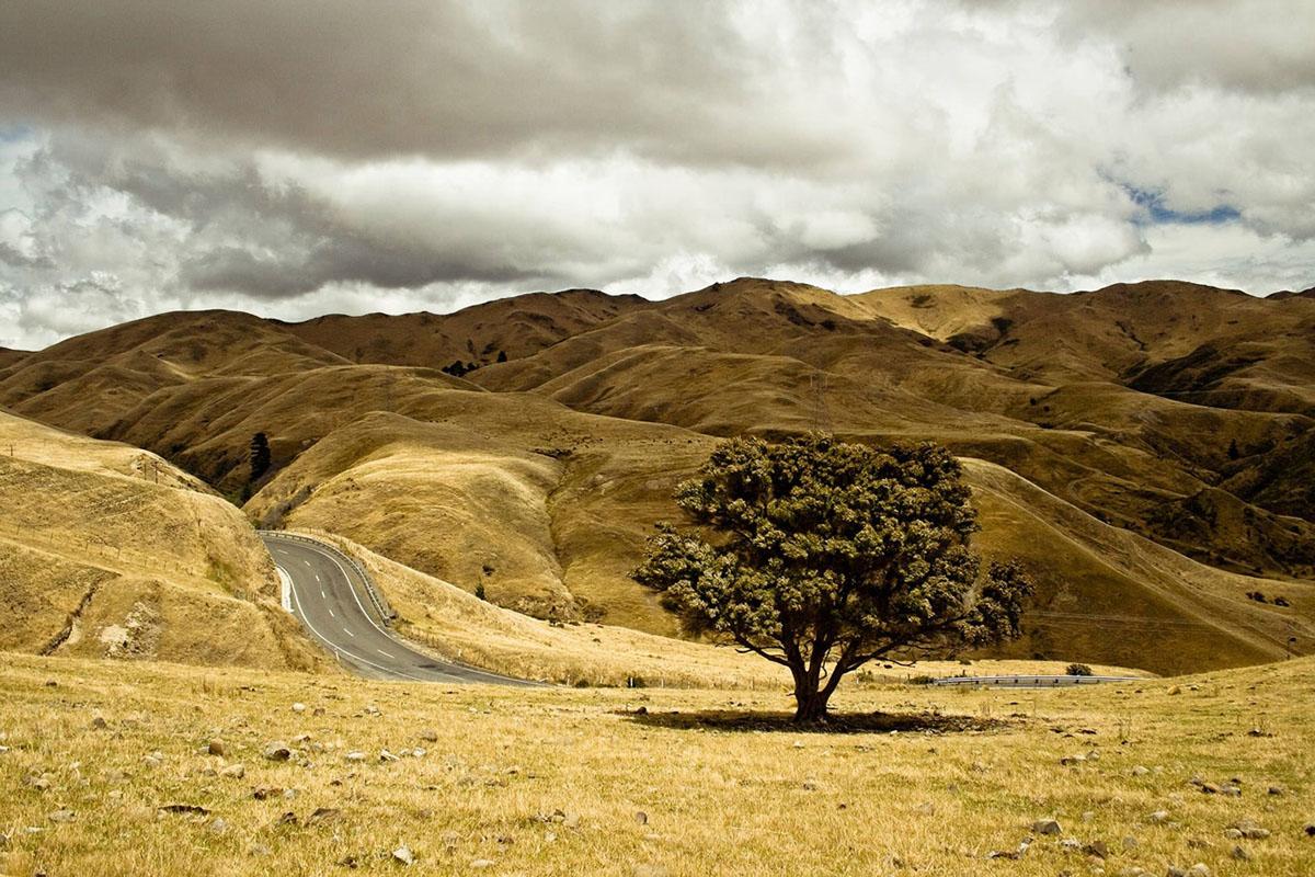 location vehicule route nouvelle-zélande