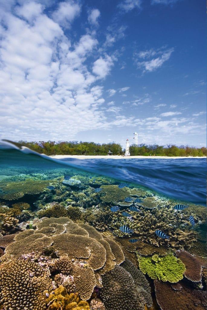 Bundaberg - Road trip côte Est Australie