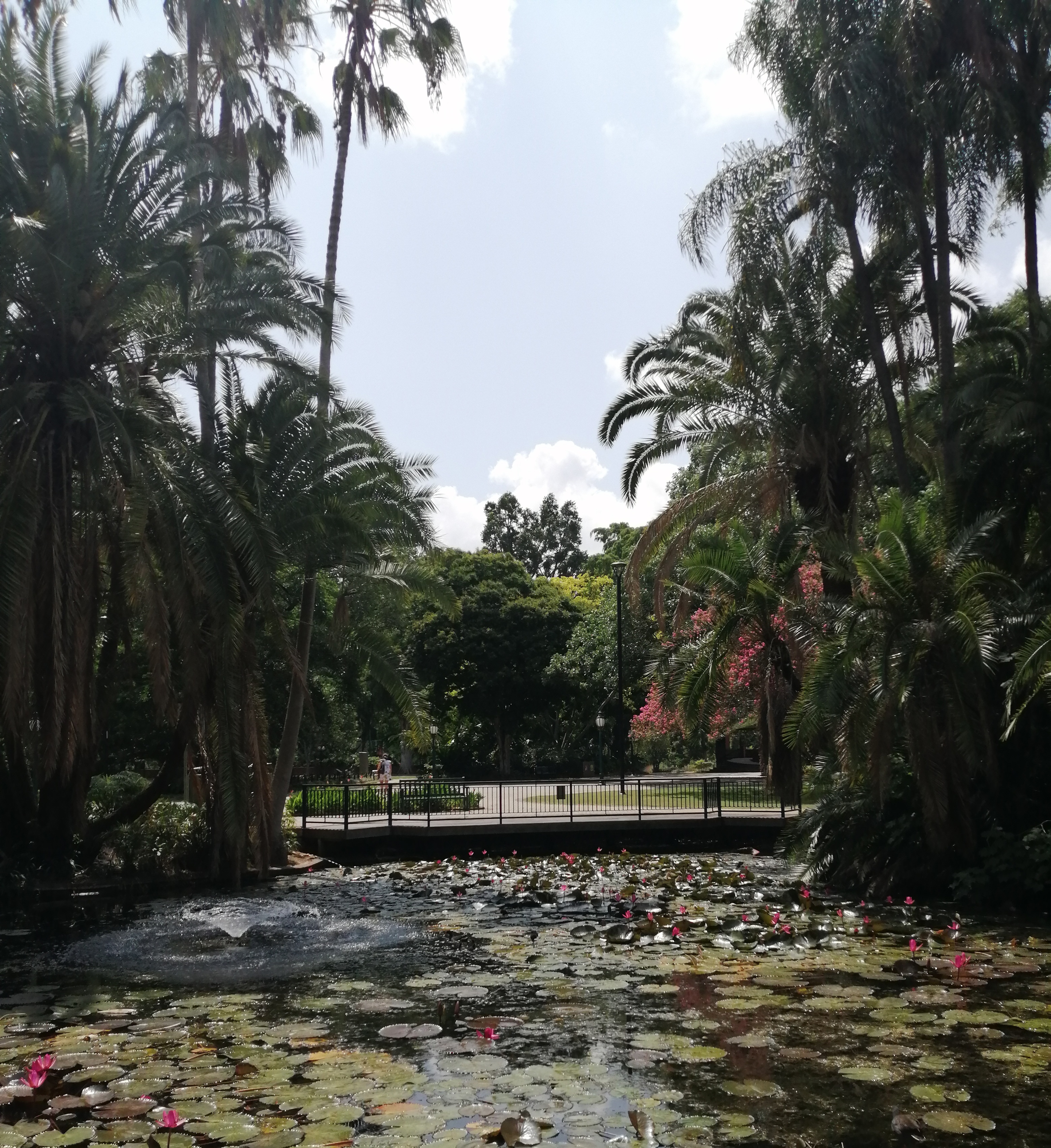 botanic city garden parc a visiter