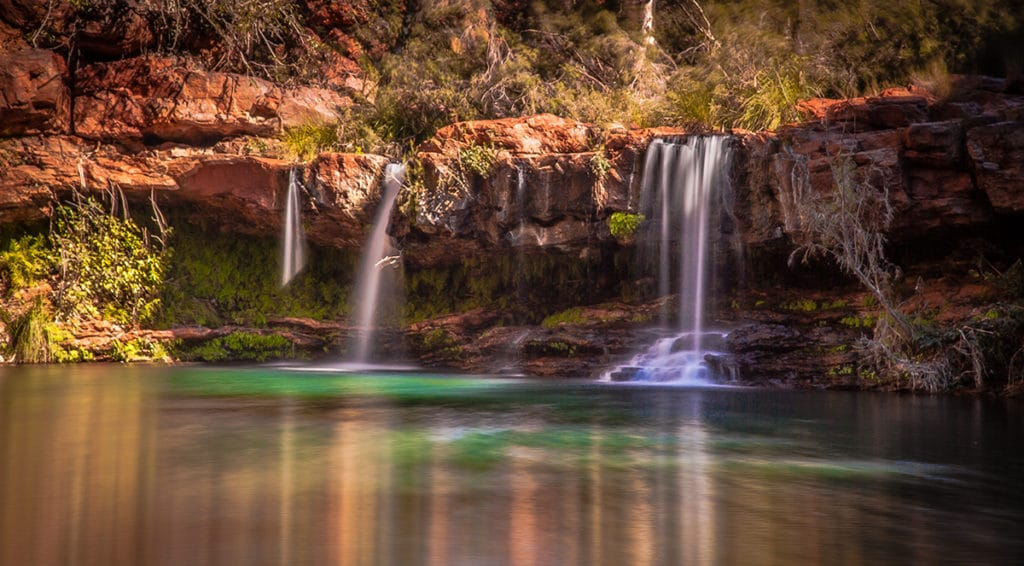 fern pool dales gorge karijini national park lieux immanquables
