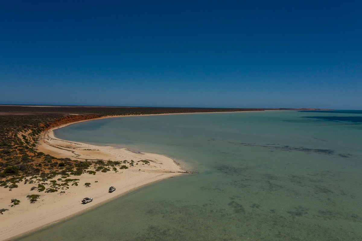 shark bay lieux immanquables