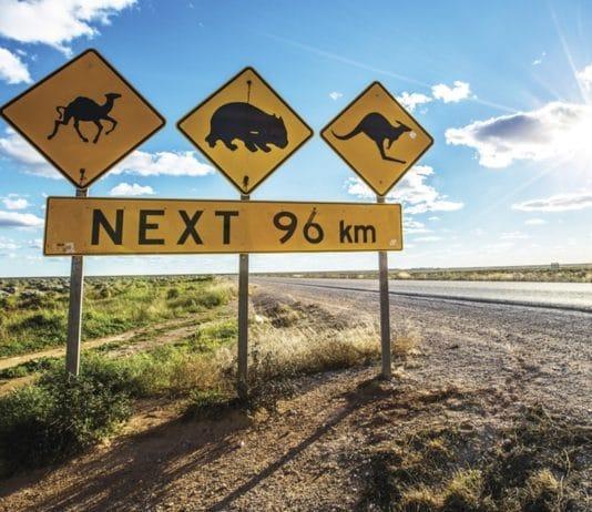 Itinéraires de road trip en Australie
