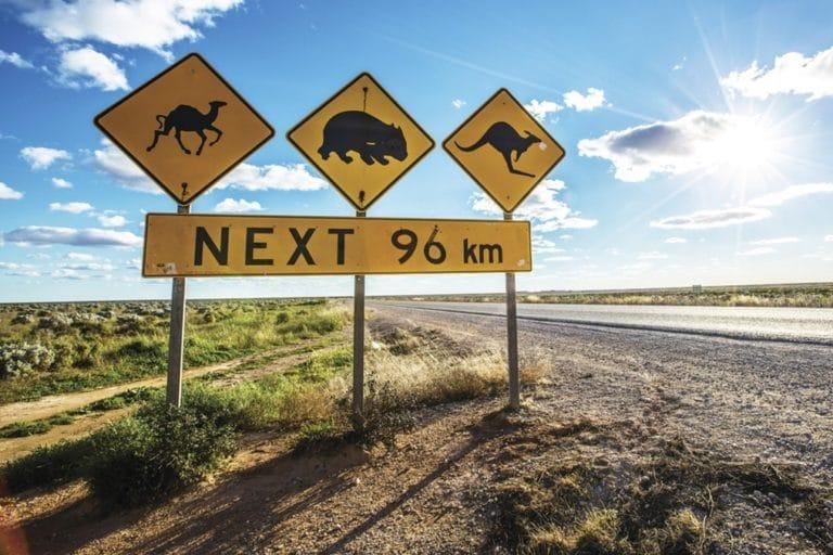 Les itinéraires de road trip en Australie
