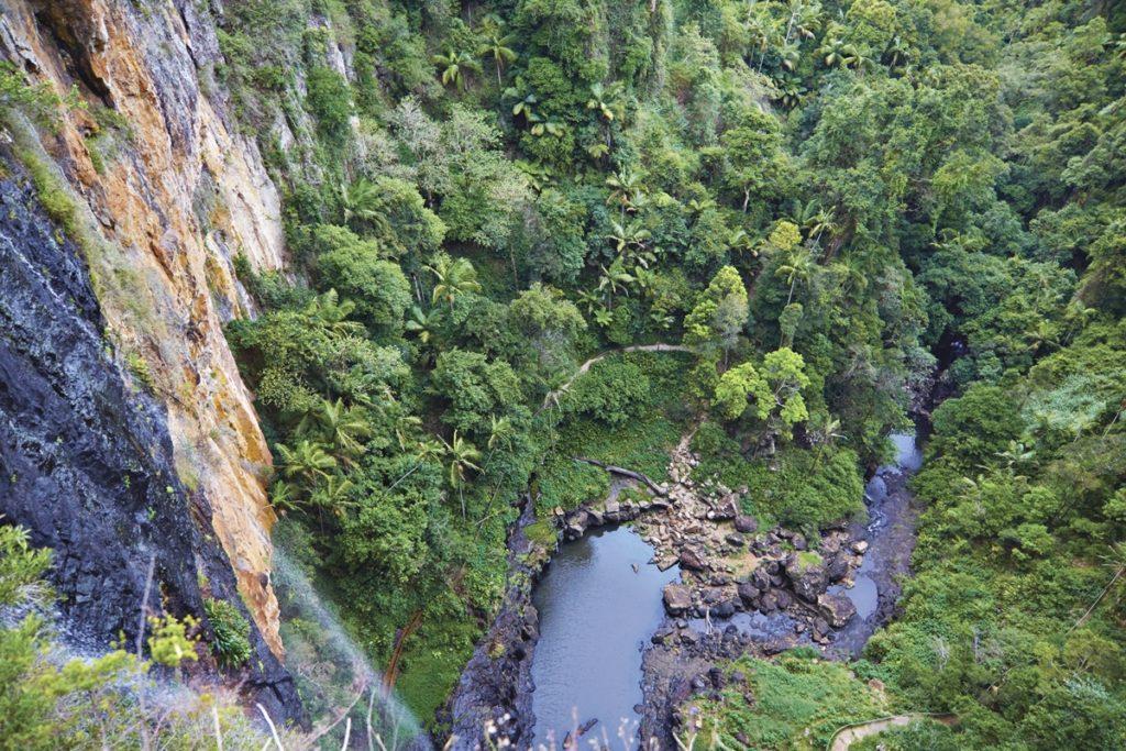 road trip cote est australie springbook national park