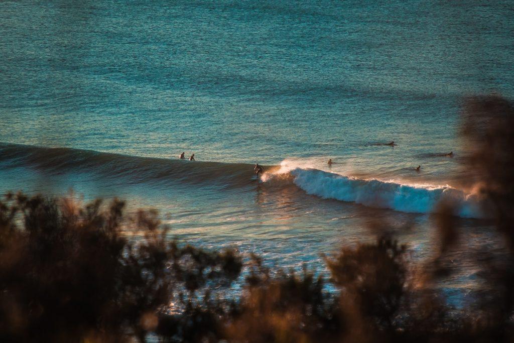 rip curl surf pro