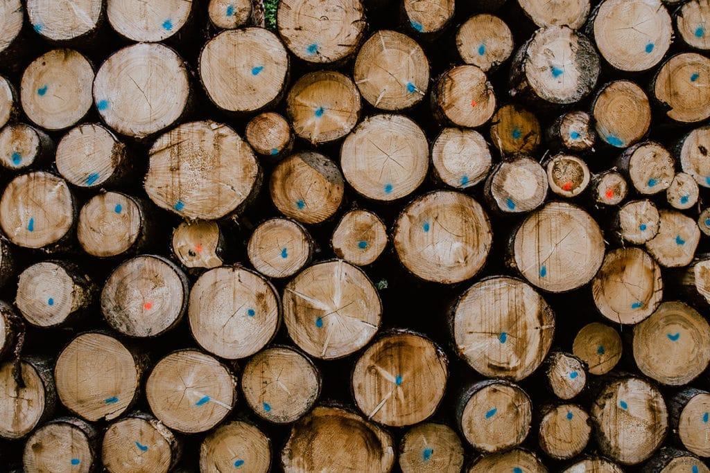 emplois eligibles renouvellement visa culture et transport d'arbres