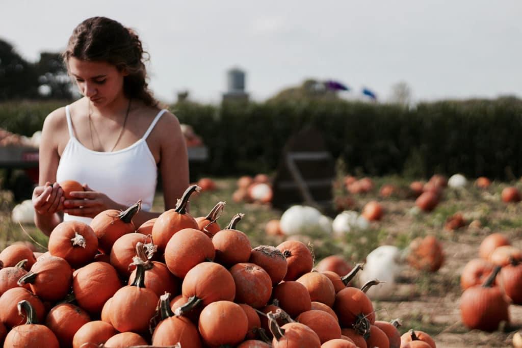emplois éligibles travail agricole renouvellement visa