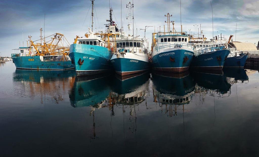 pêche et culture de perles renouvellement visa