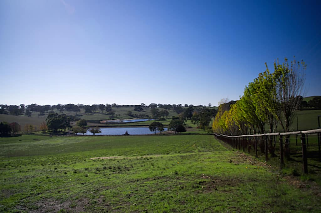 Domaine woofing south australia