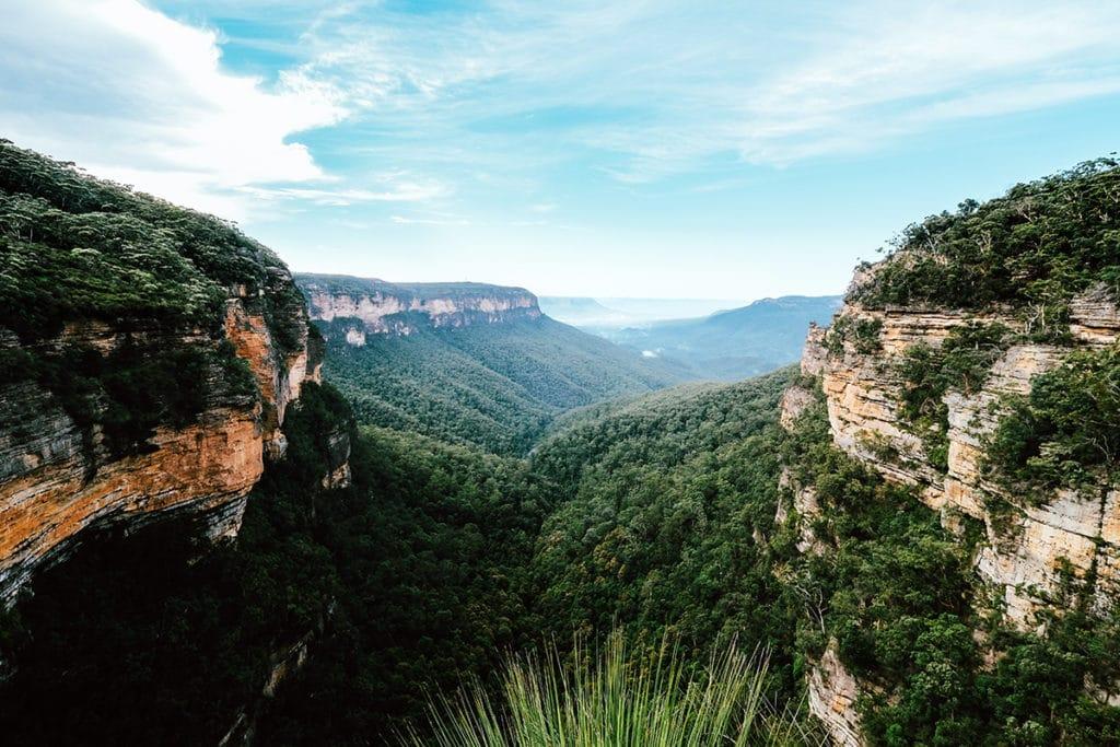 blue mountains parcs nationaux