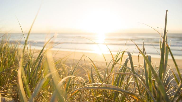 Les meilleurs spots de la Sunshine Coast