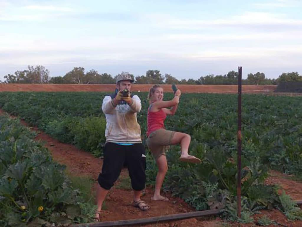 fruit picking à carnarvon