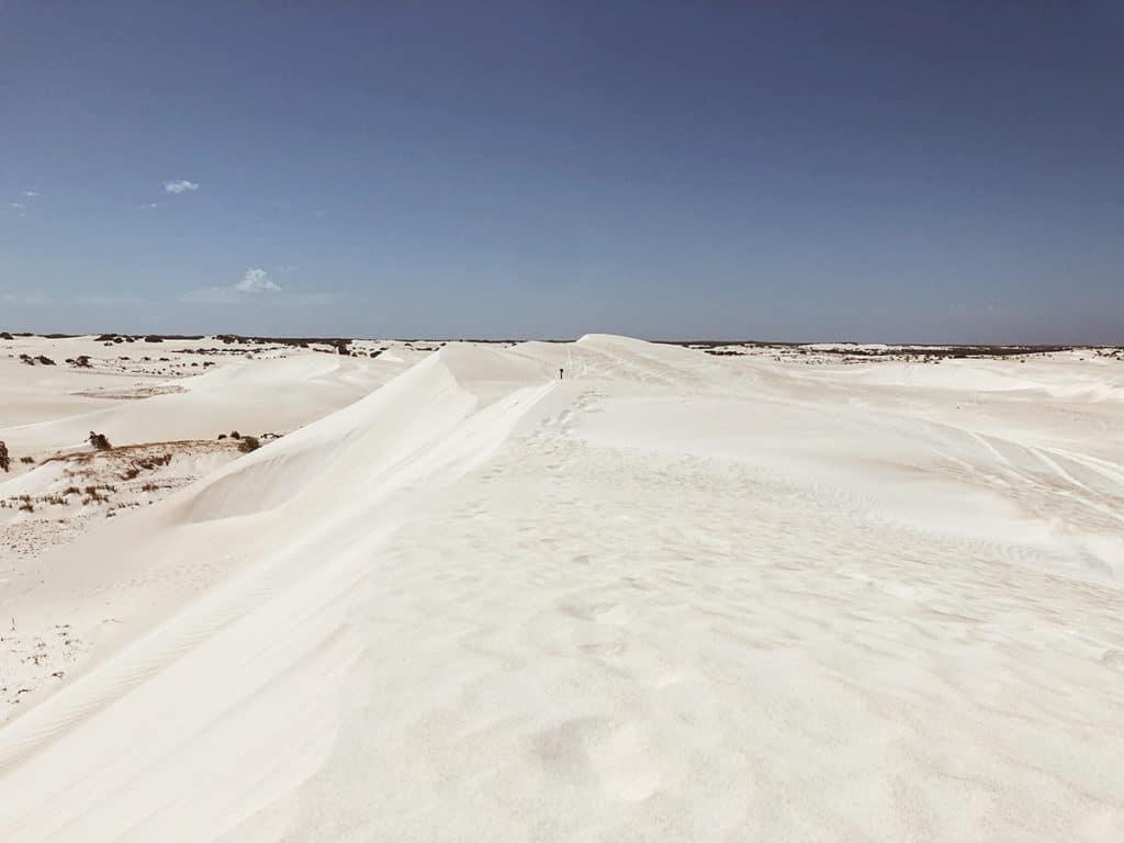 dunes de sable australie